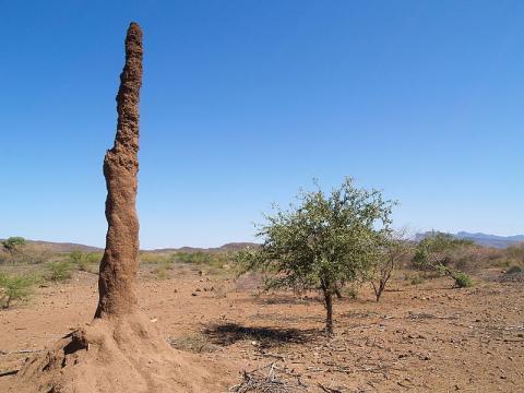 turismo-kenia.jpg