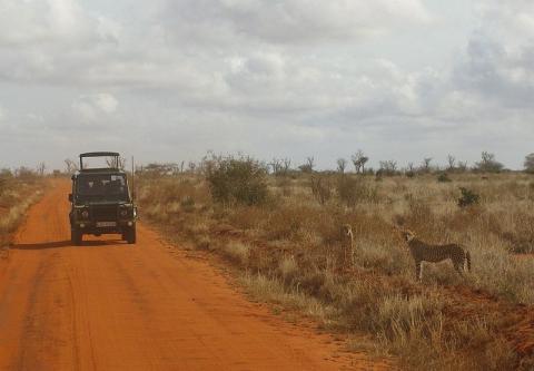 kenia-turismo.jpg